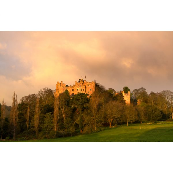 Dunster Castle By Morning Light photograph