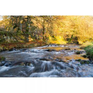 Gold At Robbers Bridge over Oare Water an autumn photograph