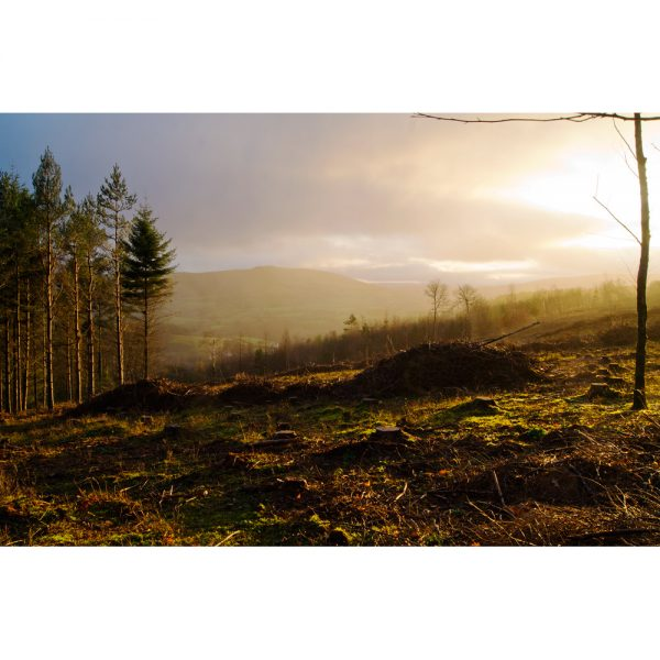Morning Light On Exmoor landscape photograph