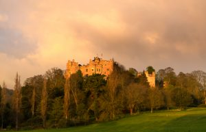 Dunster Castle By Morning Light