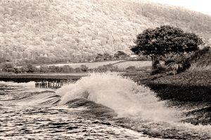 Porlock Wave