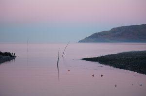 Porlock Weir In Pink