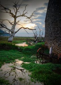Time And Tide the old barn and farm equipment on Porlock marsh