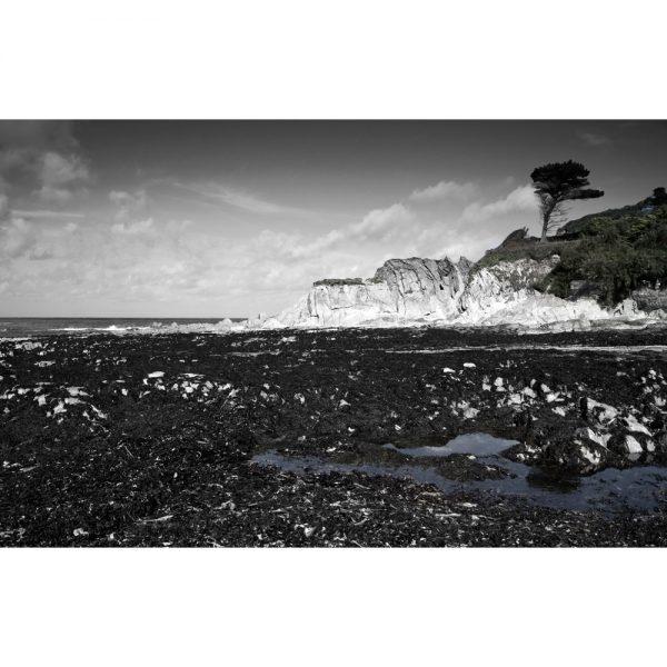 Low Tide At Lee Bay