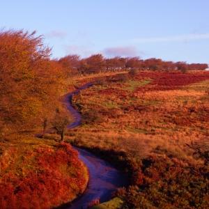 Autumn Sunrise On Exmoor landscape photograph