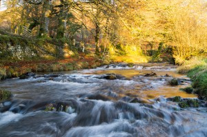 Gold at Robbers Bridge, landscape photograph of Weir Water on Exmoor