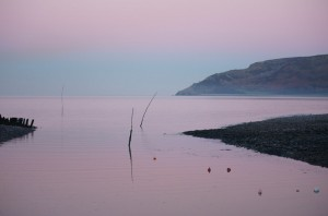 Porlock Weir In Pink photo
