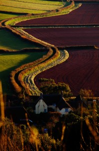 Red Soil In The Sunset view over Bossington